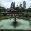 Нелли Ермолаева на Бали в ноябре 2016, фото