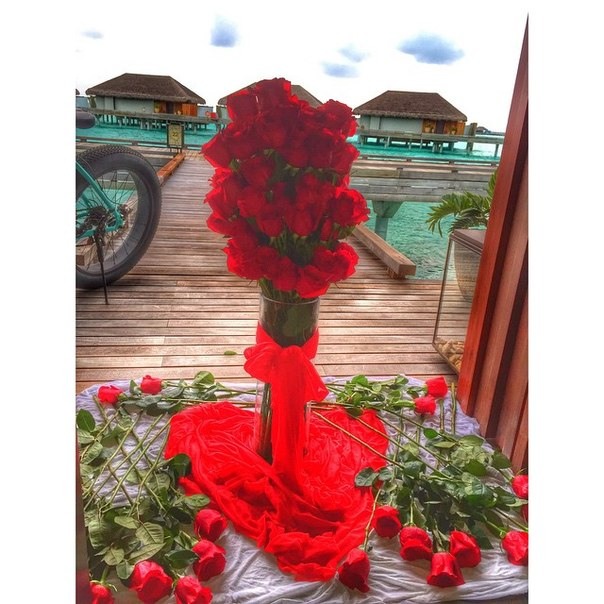 Розы Ольги Бузовой