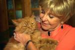 Ангелина Вовк любит кошек