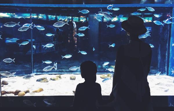 Фото Водонаевой с сыном при посещении аквариума в Барселоне