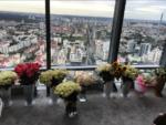 """Фото из Инстаграма Волочковой: вид на Екатеринбург из окна отеля в БЦ """"Высоцкий"""" 51 этаж"""