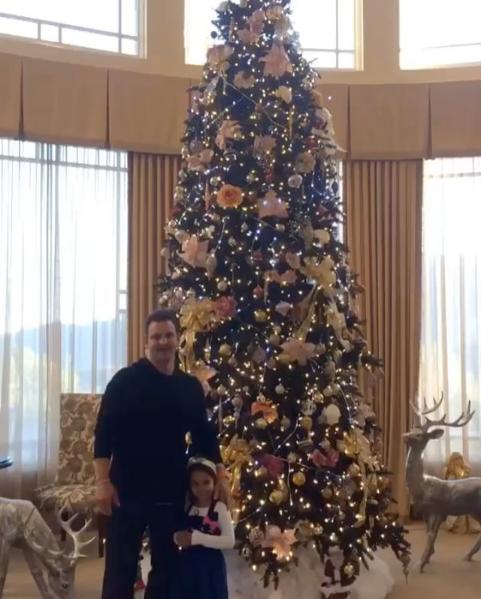 Фото новогодней ёлски в доме Бритни Спирс