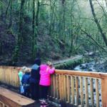 Фото детей Тори Спеллинг во время семейной поездки в Орегон в январе 2017