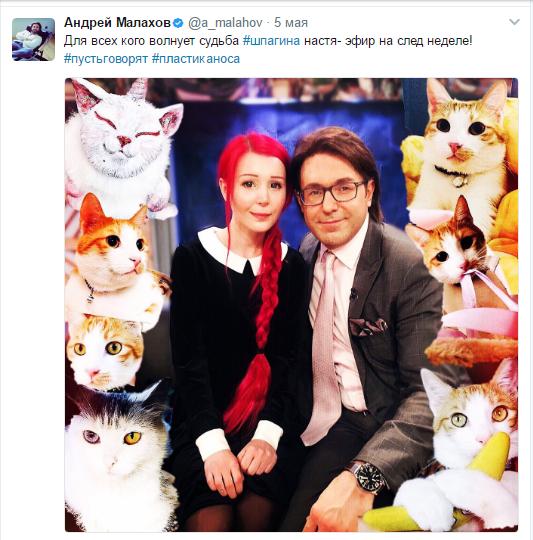 Обращение Андрея Малахова в Твиттере к поклонникам Шпагиной